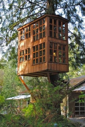Behold the beauty that is the writing treehouse.